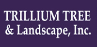 Website for Trillium Tree & Landscape