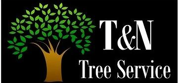 Website for T & N Tree Service