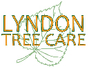 Website for Lyndon Tree Care