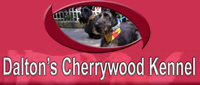 Website for Dalton's Cherrywood Kennel and Grooming