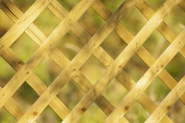 How to Build a Trellis - Lattice Grate
