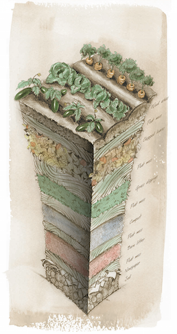 Lasagna Gardening - Diagram