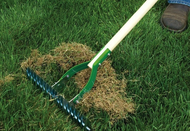 Spring Lawn Care - Dethatching