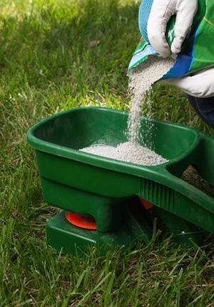 How to Fertilize Lawn in Fall - Loading