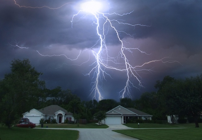 How to Protect Trees from Lightning