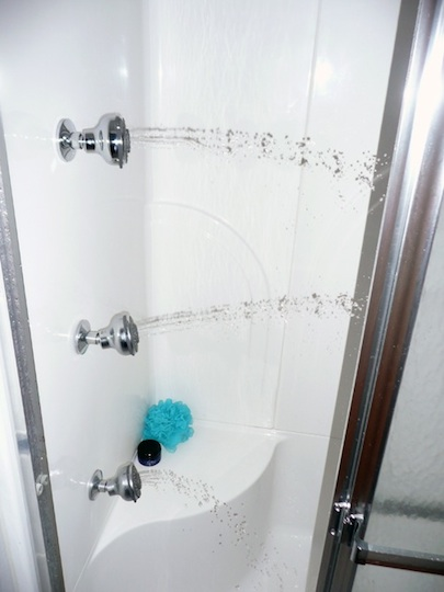 DBSchwartz-Shower-Head-Enclosure