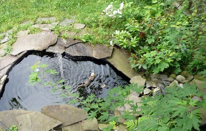 Diy backyard pond bob vila for Garden pond installers