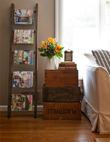 Vintage Ladder Storage