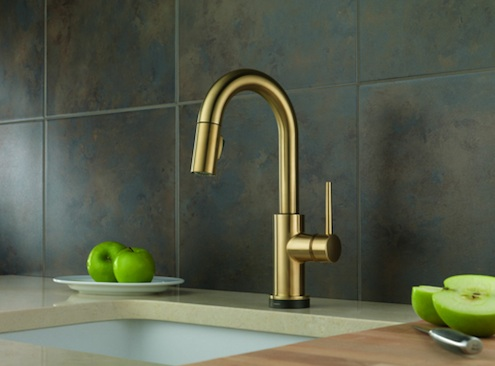 Bronze Kitchen Fixture