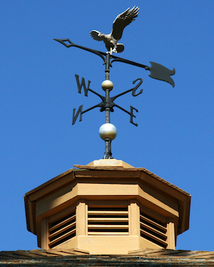 Weather Vanes - Detail
