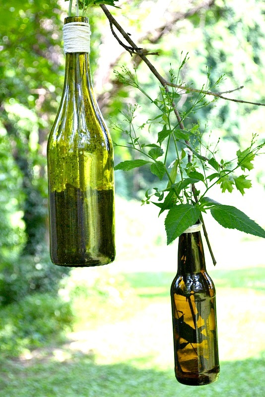Wine Bottle DIY - Planter