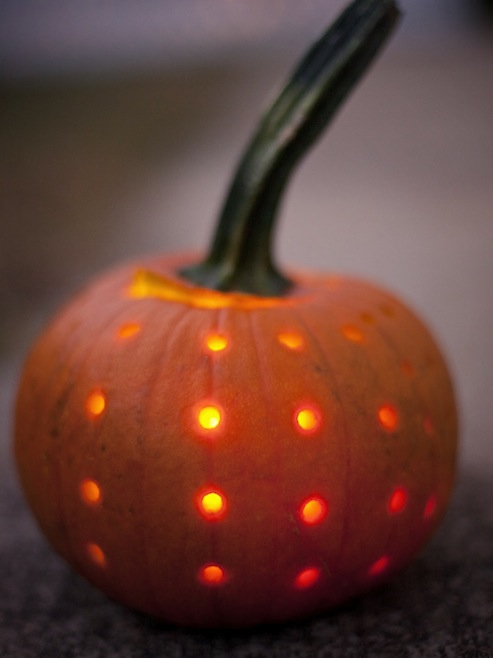 Pumpkin Polka Dot