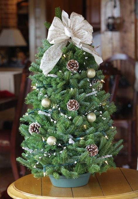 Decorative tabletop Christmas trees - Worcester Wreath