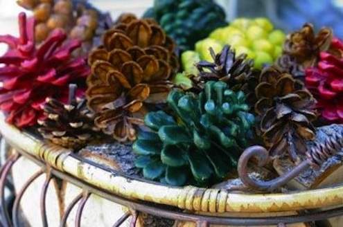 Pine Cone DIY