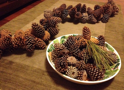 Pine Cone Garland How To
