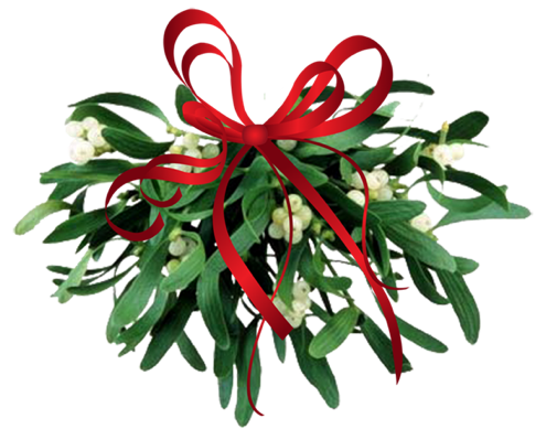Where to Find Mistletoe - Mistletoe Kissing Ball