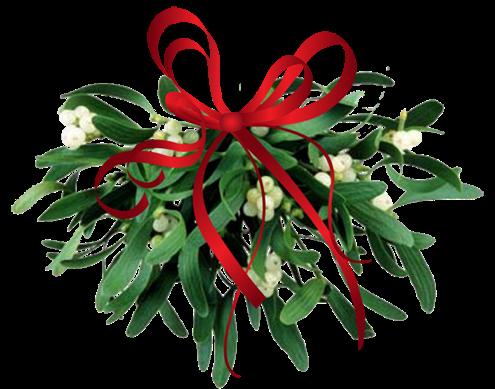 Root Ball Christmas Tree