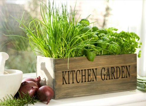 Grow herbs indoors bob vila 39 s blogs for Design indoor herb garden