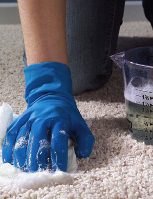 How to Clean a Rug - Soapy Water