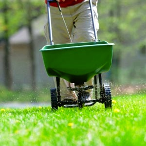 Fertilizing Grass - Spreader