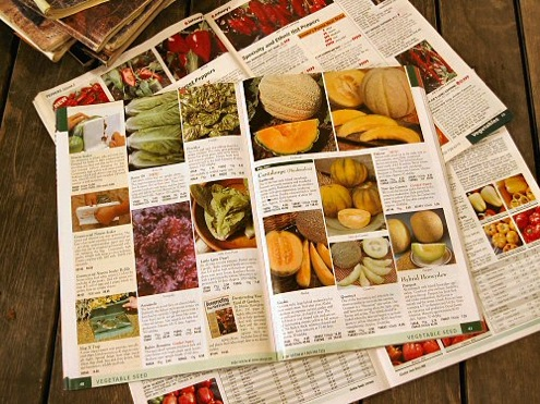 Buy Seed - Seed Catalogs