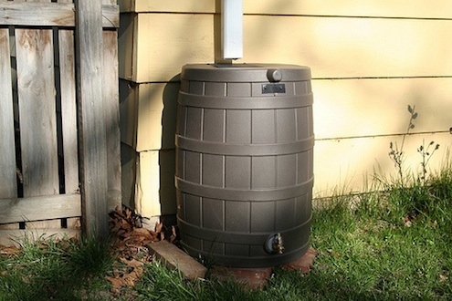 Harvesting Rainwater - Barrel