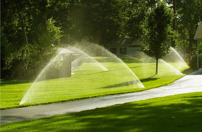 June Projects - Lawn Sprinklers