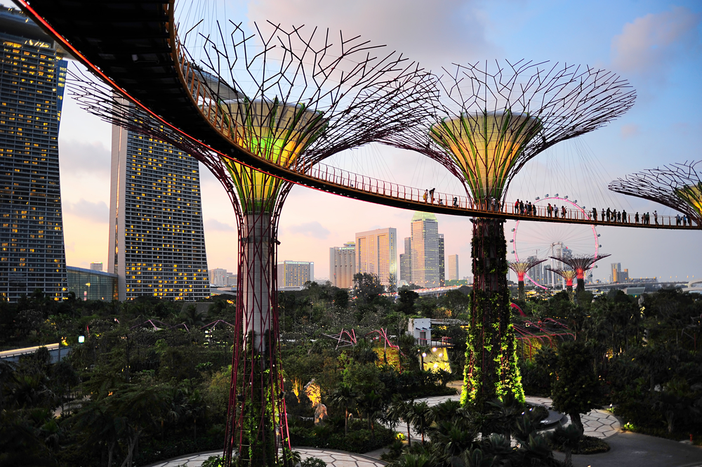 Gardens by the Bay at dusk_131519522