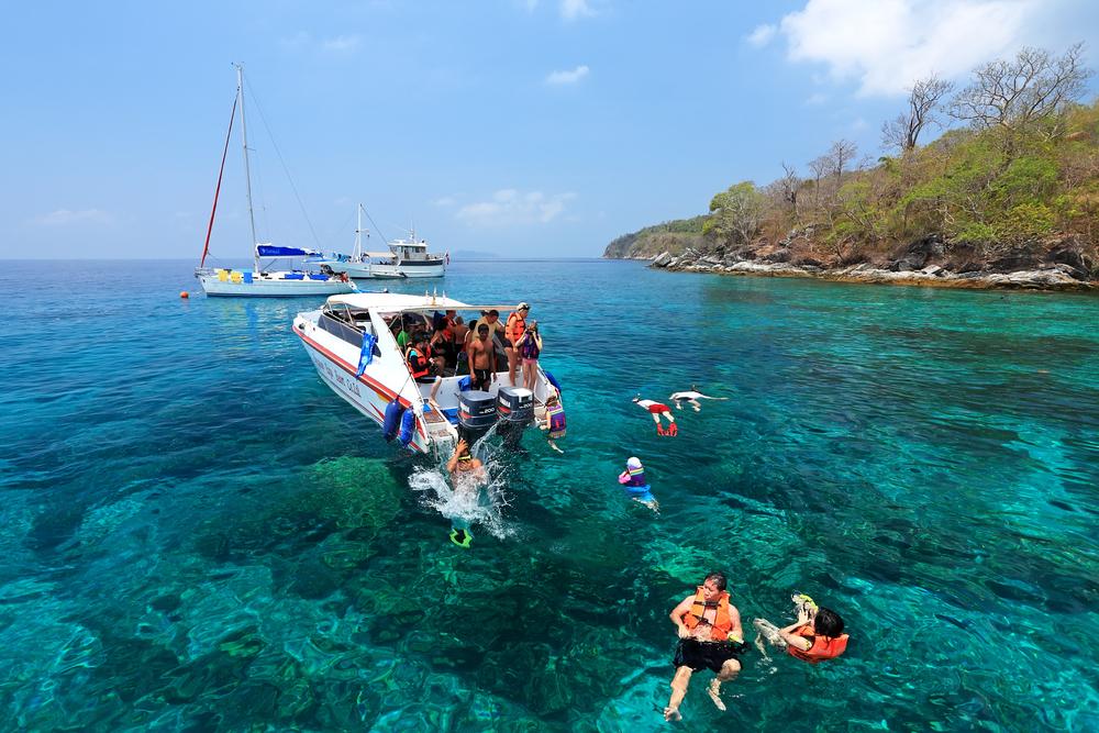 Traveler snorkeling coral reef_308809988