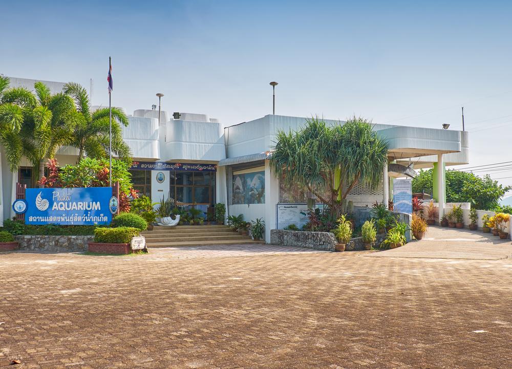 Phuket Aquarium_246343081