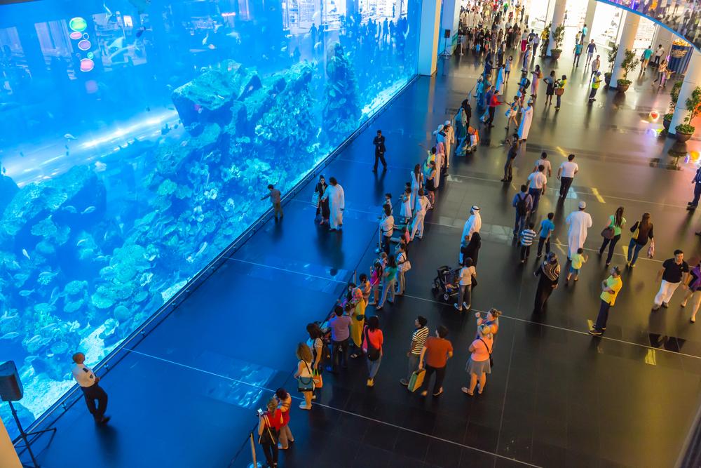 Aquarium in Dubai Mall_154503533