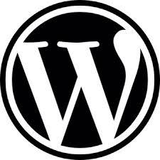 WordPress Experience (13+ years). Empowering WordPress Beyond a Website.