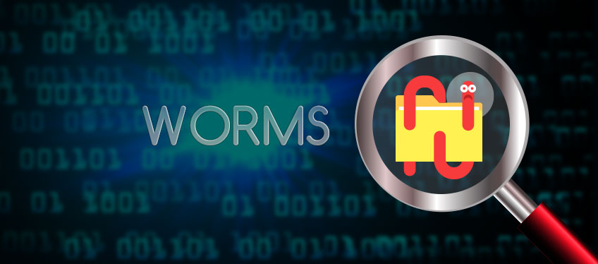what are computer worms