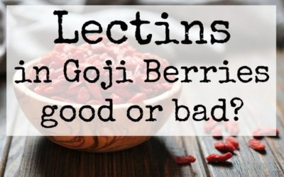 Lectins in Goji Berries – good or bad?