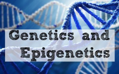 Genetics and Epigenetics