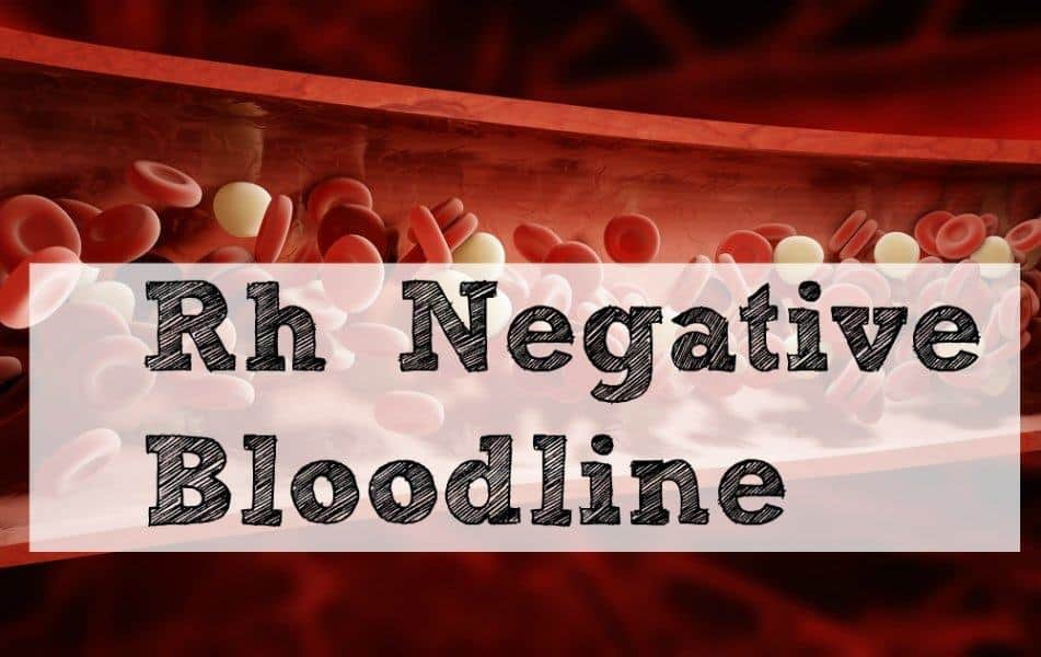 Rh Negative Bloodline