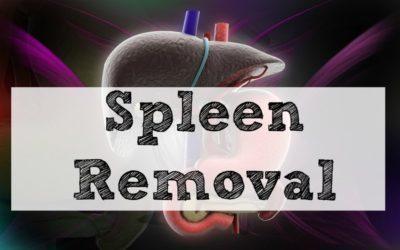 Spleen Removal