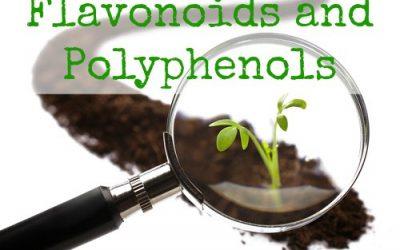 Essential Nutrients: Flavonoids/Polyphenols