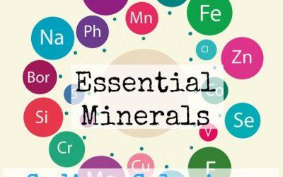 Essential Minerals: Sodium, Selenium, Molybdenum, and Sulphur
