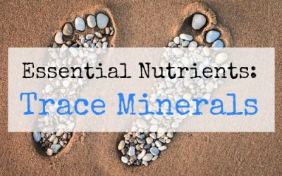 90 Essential Nutrients: Trace Minerals