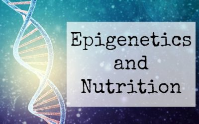 Epigenetics and Nutrition