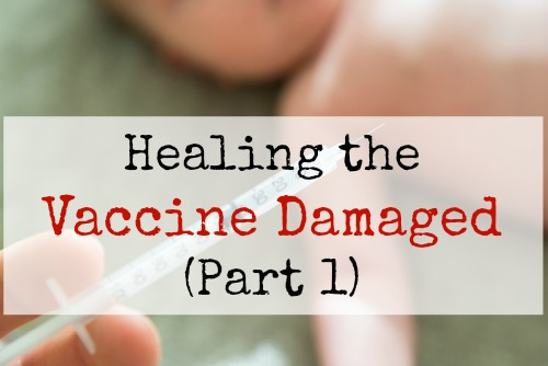 Healing the Vaccine Damaged (Part 1)