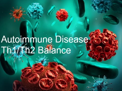 Autoimmune Disease III (Thymic recruits, Immune system Battlemap,Th1/Th2 balance)