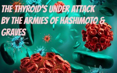 Autoimmune Disease VII (Attack on the thyroid -Hashimoto/Graves)