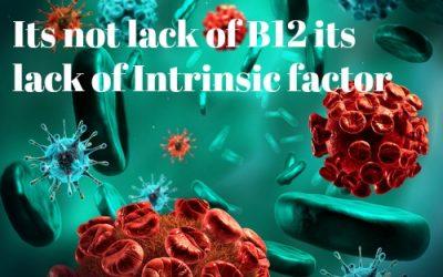 Autoimmune Disease XI Pernicious Anemia