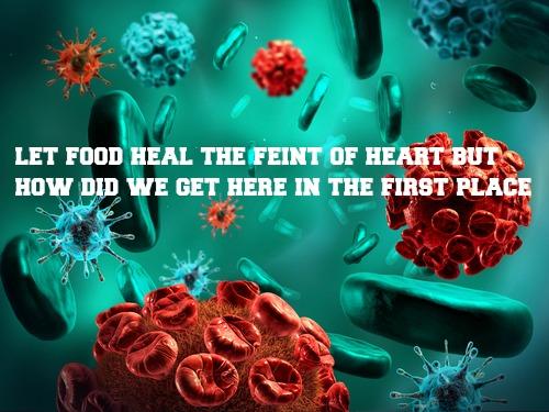 Autoimmune Disease XII Finale PART I How did we get here ? Healing food – GAPS/Probiotics