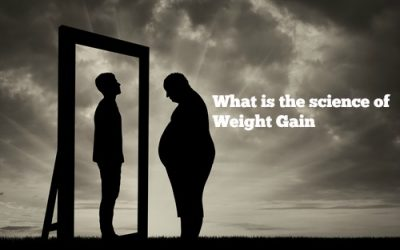 The Brain has been taken prisoner – Obesity Part II: How do we get fat
