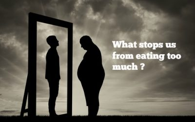 The Brain has been taken prisoner – Obesity Part IV: Homeostatic energy balance I