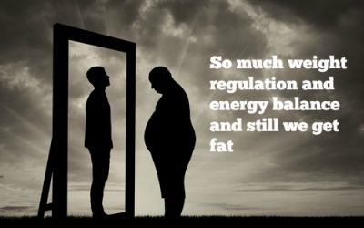 The Brain has been taken prisoner – Obesity Part V: Homeostatic energy balance II