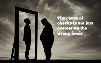 The Brain has been taken prisoner – Obesity Part VII: Summary and the endocrine glands